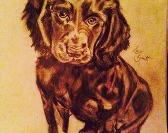 Made to order Pet / Animal Drawings