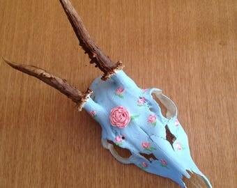 Hand Painted Deer Skull - Cath Kidston Style - Taxidermy - Oddities