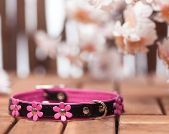 "soft feel - collar leather ""Flowers"" in 9 colors neck size 21-26 cm for very small - small dogs art. BLACK PINK 582"