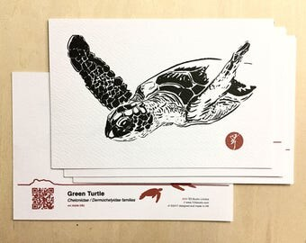 Endangered Animal Postcards (Green Turtle)