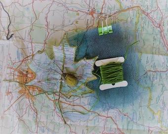 Beetle Journeys - Green Beetle