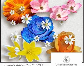 Digital Scrapbooking Flowerpack 3 CU ok