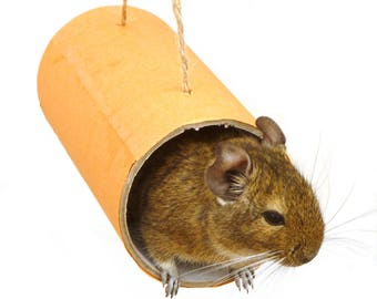 Chewchewbs (Orange) - Small pet toy, degu, rat, gerbil, hamster tube.