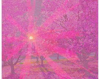 Cherry Blossom in Prospect Park