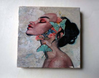 Butterfly Lady Coaster