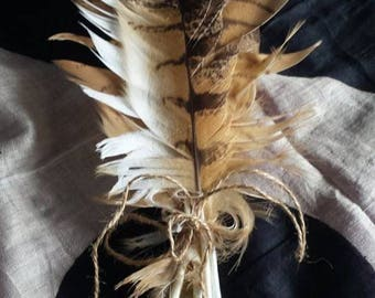 Eagle owl feathers (mixed)