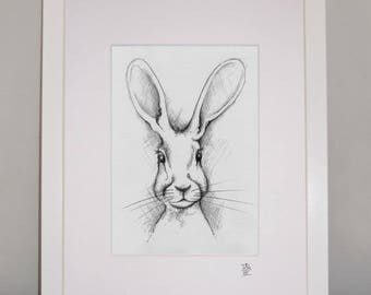 Hare Print,from original sketch by Trish Heel.10x8 Mounted ready for 10x12 frame.Contemporary mounted art print from original pencil sketch