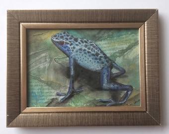 No.1 - Blue Frog
