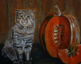 Cat Scottish fold pumpkin Halloween