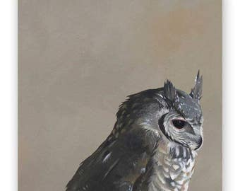 Oriental Scops Owl - 10 x 10 Wings on Wood Decor