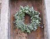EUCALYPTUS WREATH    natural dried decoration  for door or wall