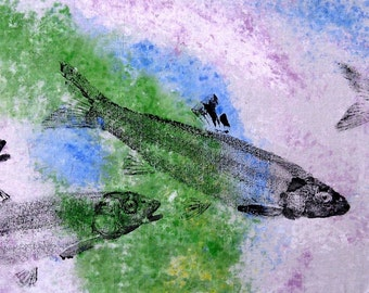 GYOTAKU fish Rubbing Fallfish 8.5 X 11 quality Art Print Minnow Cottage Decor by artist Barry Singer