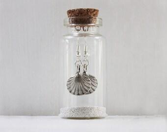 Scallop shell Earrings In A Little Bottle