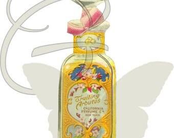 Printable Scrapbooking Beauty Artwork Download Vintage Perfume Digital Crafting Illustration Clip Art Image