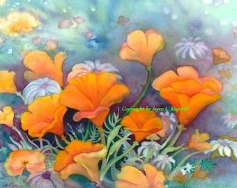 California Sunshine Poppies