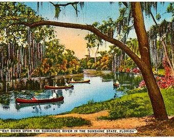 Vintage Florida Postcard - Canoeing on the Suwannee River (Unused)