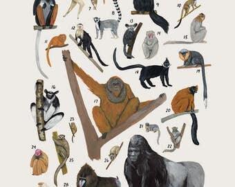 Creatures of the order Primates