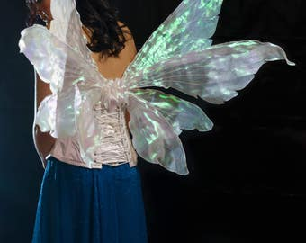 Adult pixie fantasy double wings