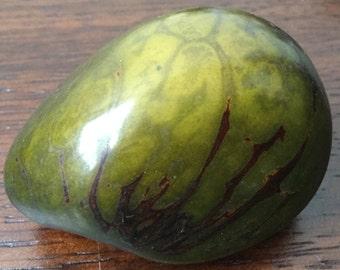 Tagua nut stone rocks-rock-raw-rough-Tagua-Tagua stone art-Natural -Rainforest nut Seed-Tagua Vegetable ivory-Eco friendly-Ecuador-home art