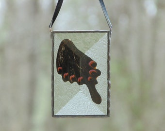 Real butterfly wing pendant suncatcher ornament, stained glass wall hanging or window decoration, insect glass butterfly, unique art