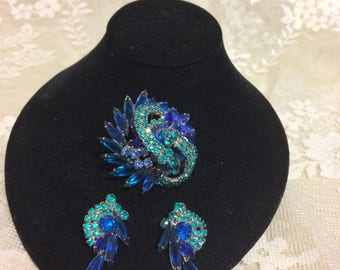 Stunning Rhinestone  Brooch and Earring Set
