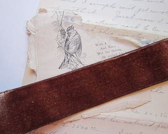 2 yards rayon velvet ribbon - medium brown - 1.375 inches