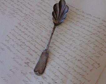 Vintage  Scalloped Wm Rogers plated sugar spoon - Has M monogram on handle