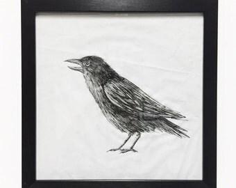 Original crow