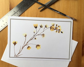 Barberry Plant Card