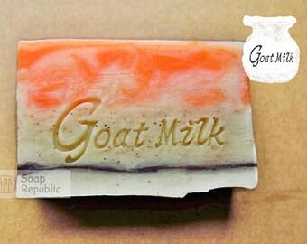SoapRepublic Goat milk soap 4 Acrylic Soap Stamp/ cookie stamp