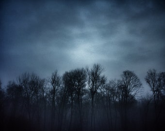 Fine art photography - Foggy Morning - Color photography
