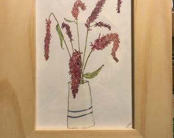Celosia watercolor