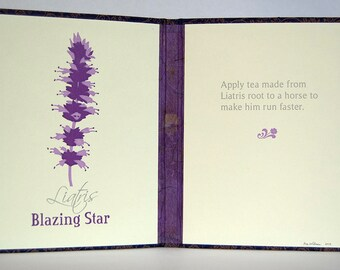 Flower Lore Diptych – Purple Blazing Star (Liatris) – 3 Color Letterpress Endsheets with Book Casing Structure (Item No. 247)
