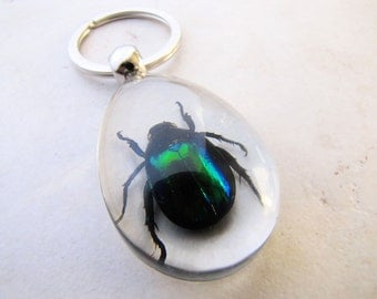 Scarab Beetle Keychain, Insect Keychain, Gifts for Him, Egyptian Scarab, Entomology, Horcrux, Harry Potter, Fantastic Beasts, Science