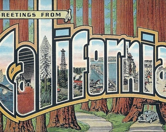1940's Greetings From California Vintage Postcard