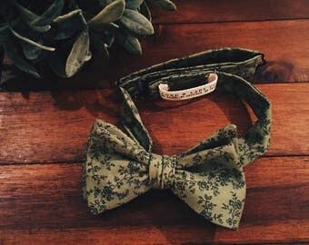 Bow Tie || Belgrave