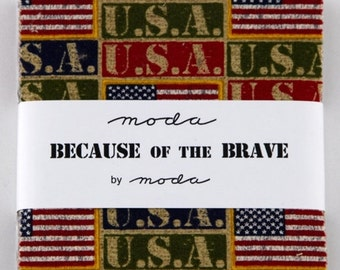 Becuase of the Brave Charm Pack, Moda Fabrics, Blue Green Red, Five Inch Squares, Precuts, Deigner Fabrics, Patrioitic USA Military