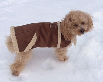 "Faux Suede Dog Coat, ""Northern Lights"" Small Dog Coat"