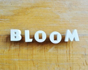 BLOOM - Vintage Ceramic Push Pins