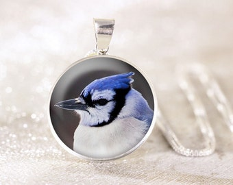Silver Blue Jay Necklace - Sterling Silver Bird Necklace, Real Silver Bird Jewelry, Sterling Silver Blue Jay Jewelry Pendant, Bird Gift
