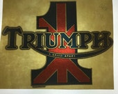 "Vintage 1979 ""Triumph"" Transfer on Brand New Tee Shirt"