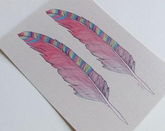 "Postkarte, postcard, ""Federn"""