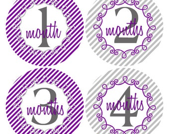 Monthly Age Stickers, First Year Stickers, 12 Month Stickers, Purple and Grey, Baby Stickers, New Mom Gift, Baby Nursery Decor (301)
