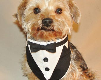 Sewing Pattern 3 sizes Small Med Large Pet Formal Wear Tuxedo Bandana Wedding Pattern PDF Digital Download Files Sewing Pattern and Tutorial