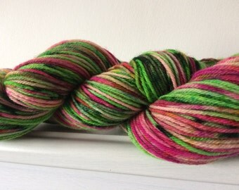 "Hand Dyed Superwash BFL DK Yarn 100g 225m  ""Messed Up Meadow"""