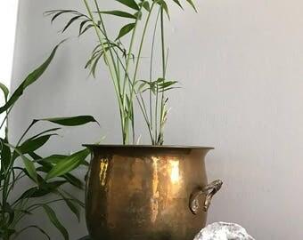 Large Vintage Brass Planter/ Brass Pot
