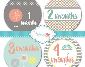 Monthly Baby Stickers - Baby Shower Gift and Photo Prop - moder flower - 311