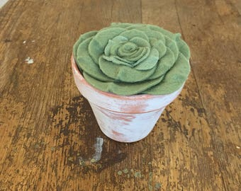 "READY TO SHIP   Felt succulent potted in 4"" handpainted pot"