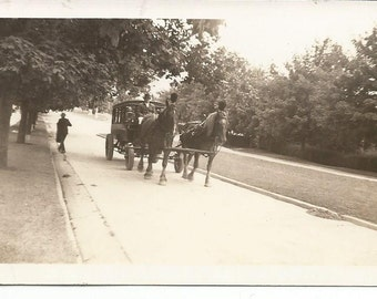 Vintage 1910's Horse and Carriage Hearse Photograph