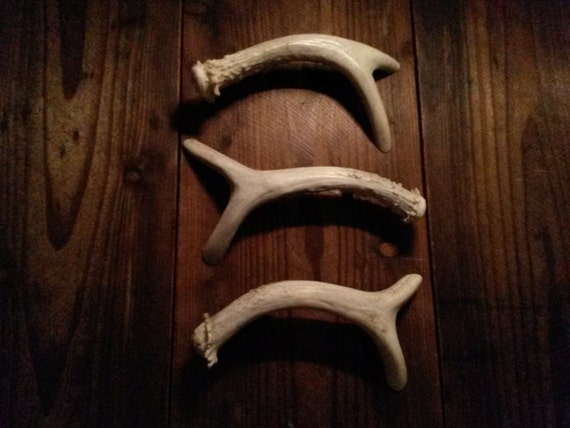 3 Antler Handles Real Whole Deer For Cabinet Doors And Drawers